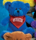 "10"" ""Patty"" Bear™"