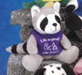 "5"" Q-Tee Collection™ Racoon"