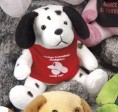 "5"" Q-Tee Collection™ Dalmation"