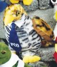 """7"""" Nature Pals™ Hawk"""