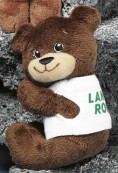 "5"" Tach-it Bear™"