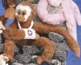 """14"""" Monkey Clingers™"""